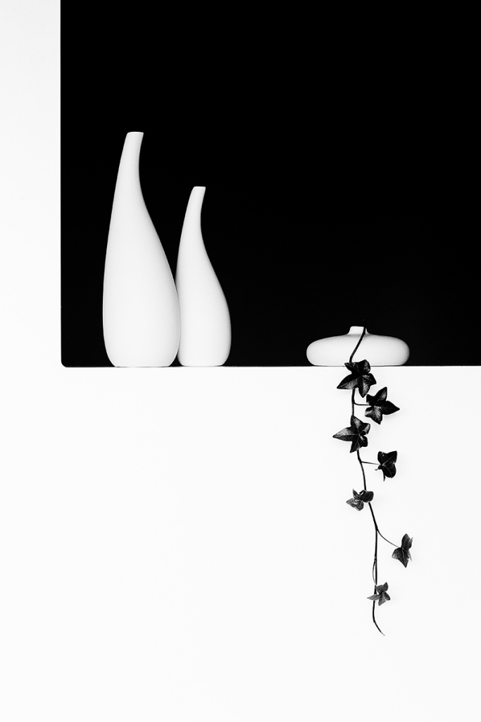 How to Photograph Still Lifes - vases with ivy