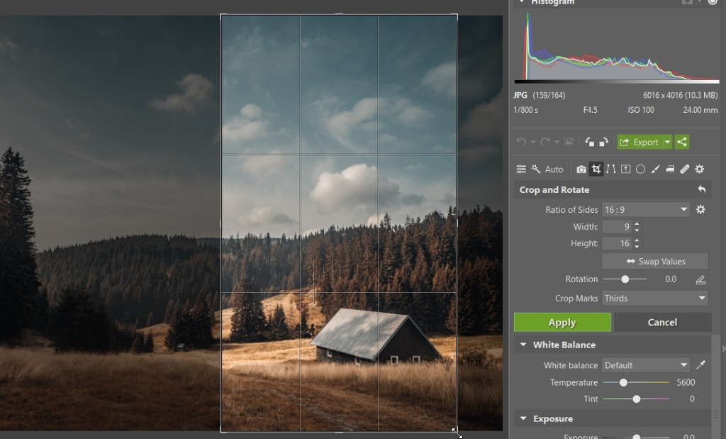 Better Composition Through Cropping: 4 Ways to Improve a