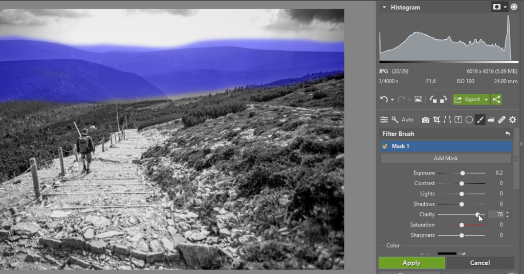 Black and White Landscapes: Check - brush clarity