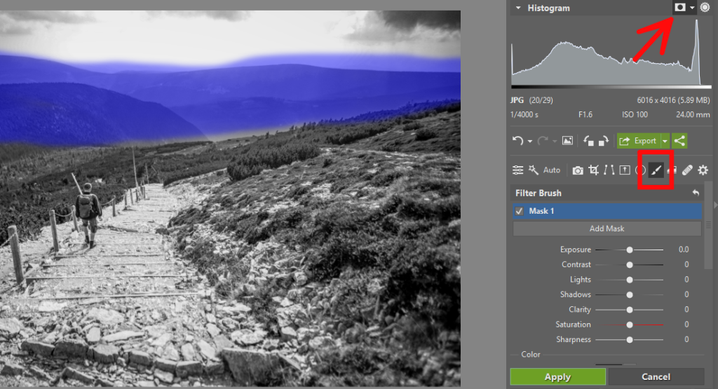 Black and White Landscapes: Check - filter brush