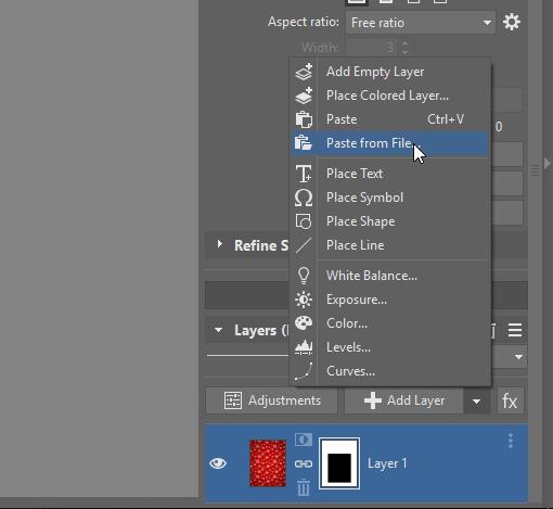 paste picture file