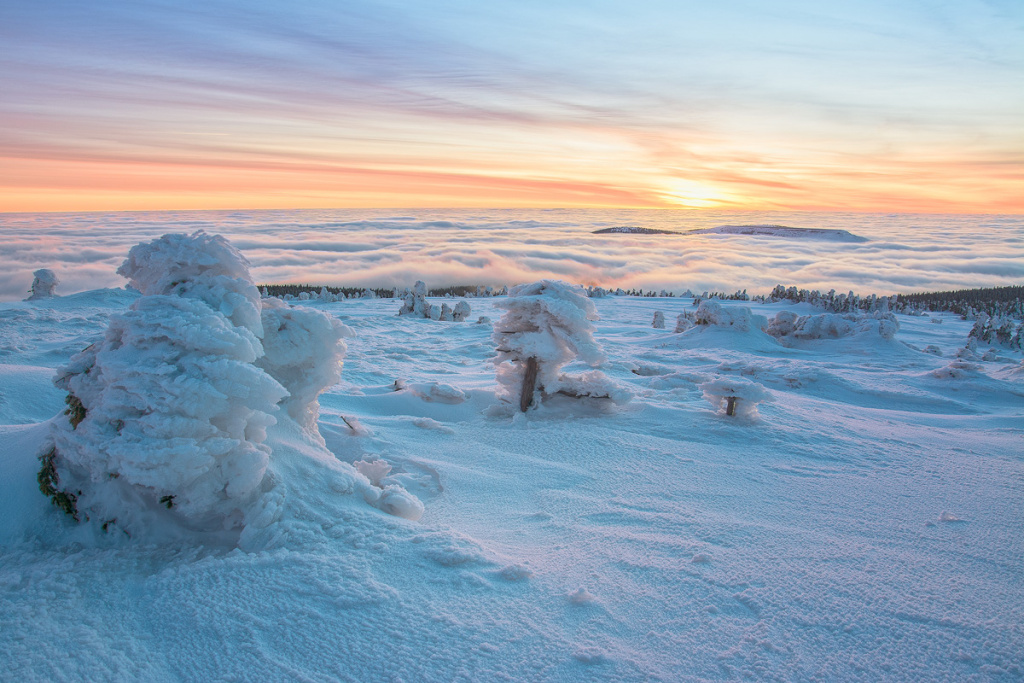 Winter Outdoor Photography - frost inversion