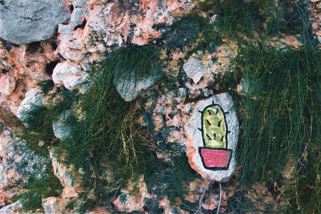 How to Take Vacation Pictures - cactus on stone