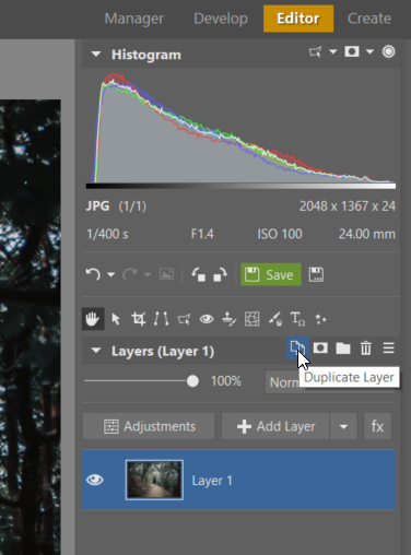 How to Get Perfect Symmetry - duplicating layer in ZPS