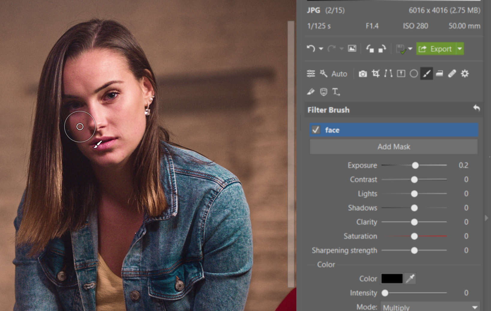 Try Editing a Nighttime Portrait - brush usage