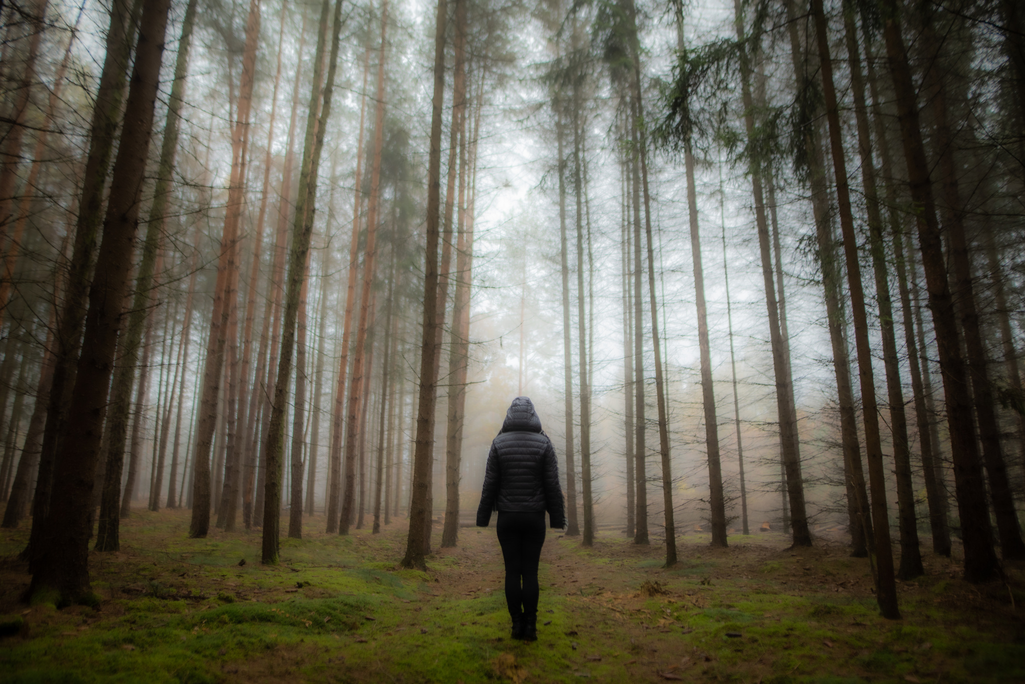 6 Edits You'll Do Better to Avoid - person in a forest
