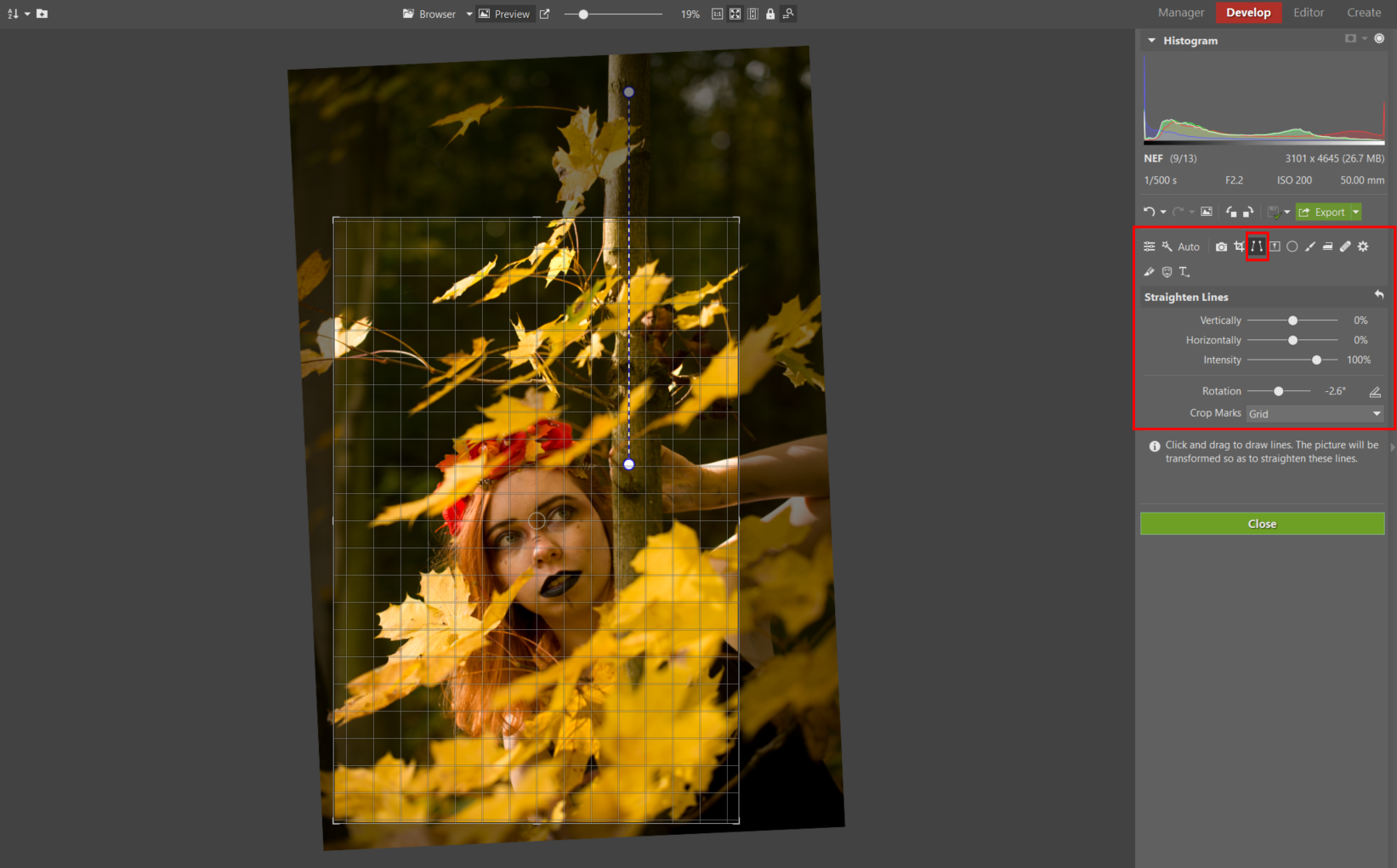 Developing an Autumn Portrait Step by Step - cropping and balancing photo