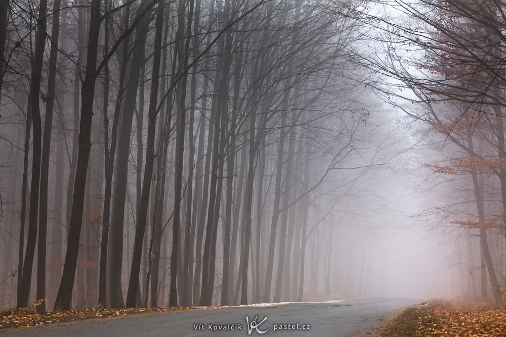 How to Photograph Foggy Landscapes