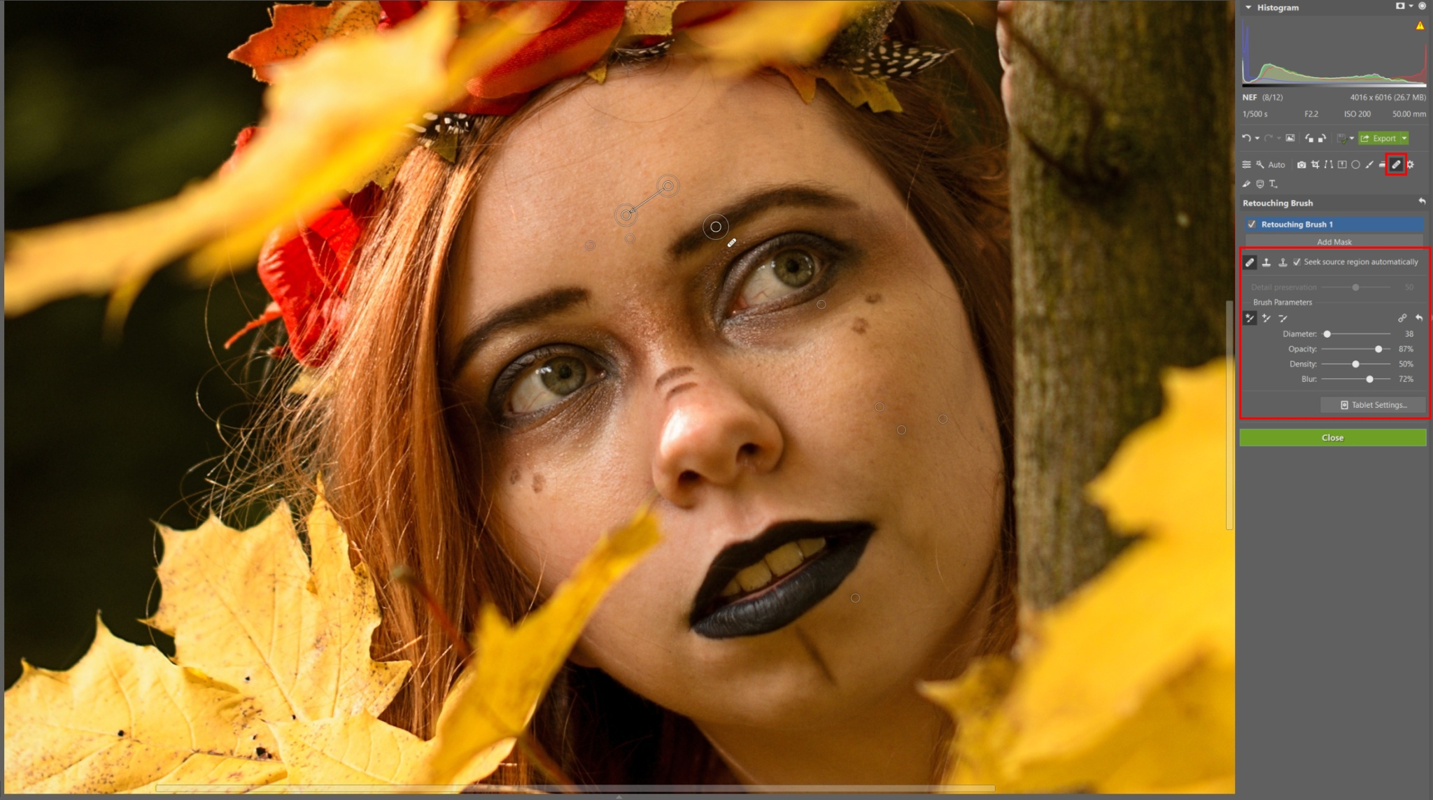 Developing an Autumn Portrait Step by Step - face cleaning