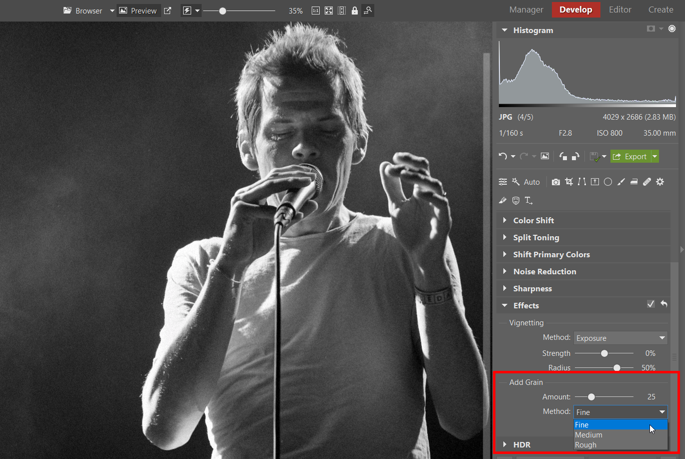 Two Ways to Add Grain to Your Black and White Photos