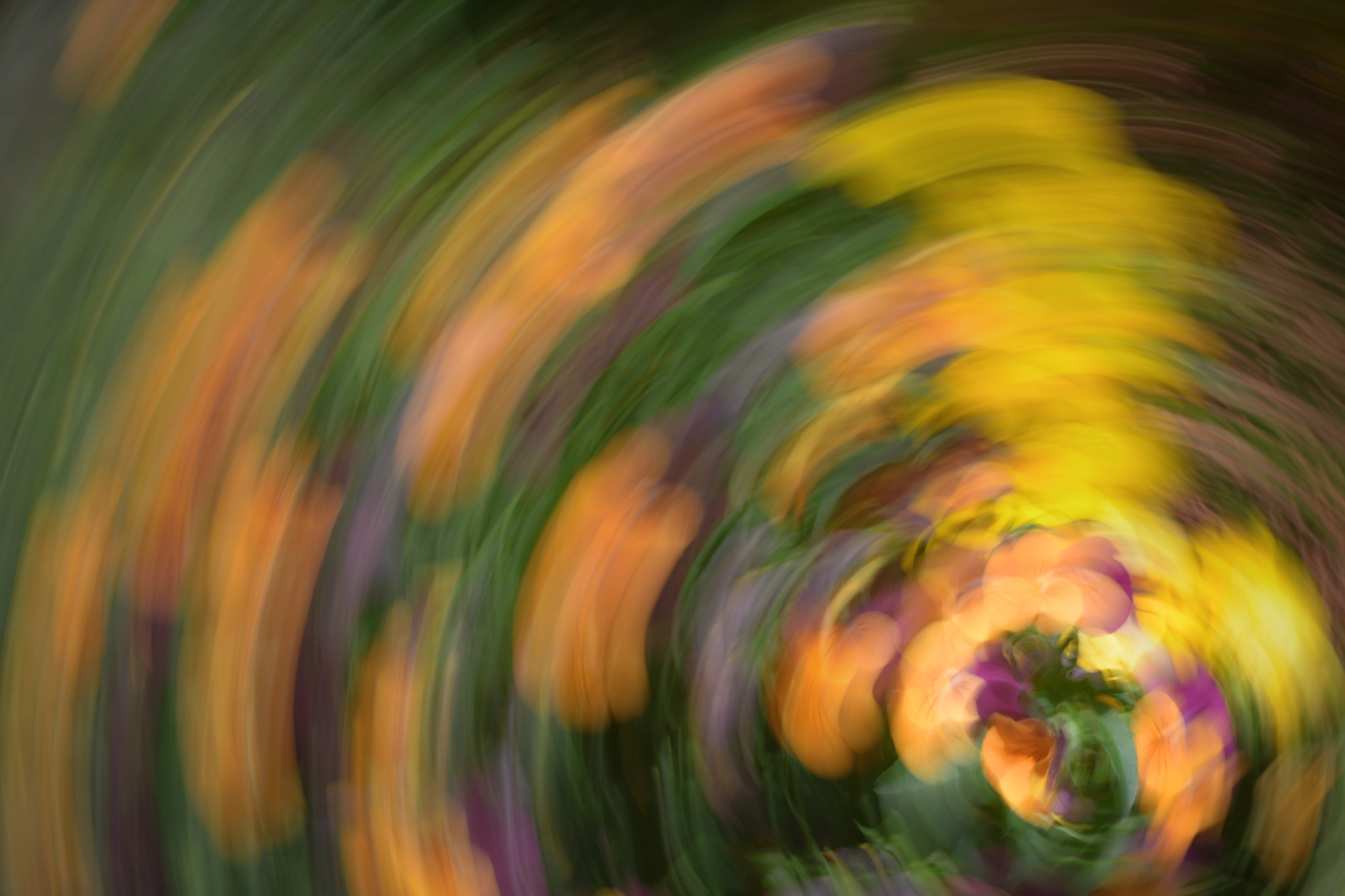 Motion Experiments That Will Make a Photographer's Head Spin!