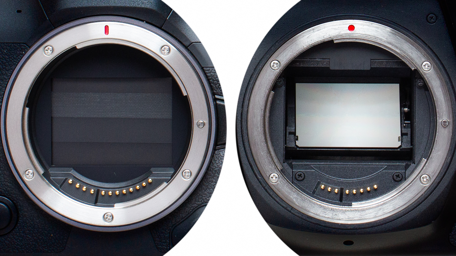 Comparing digital single-lens reflex (DSLR) and mirrorless cameras. Which one is right for you?