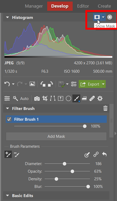 The Filter Brush: Have Complete Control Over Every Part of Your Photo