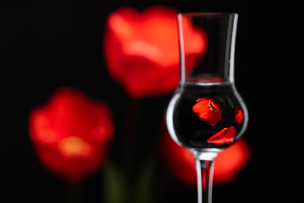 How to Do At-Home Flower Photography